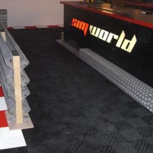 SimWorld 2